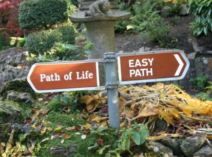 Alegere - calea vietii sau calea usoara
